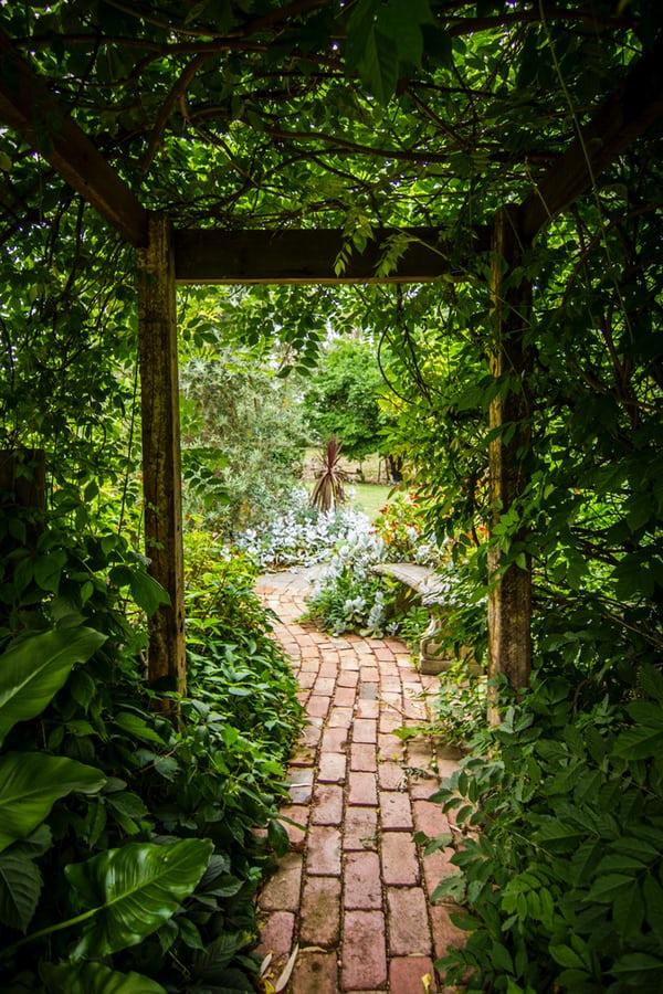 Zbudować piękne ścieżki i zbiornik wodny, posadzić rośliny odpowiednie do powierzchni - oto, jak urządzić ogród.
