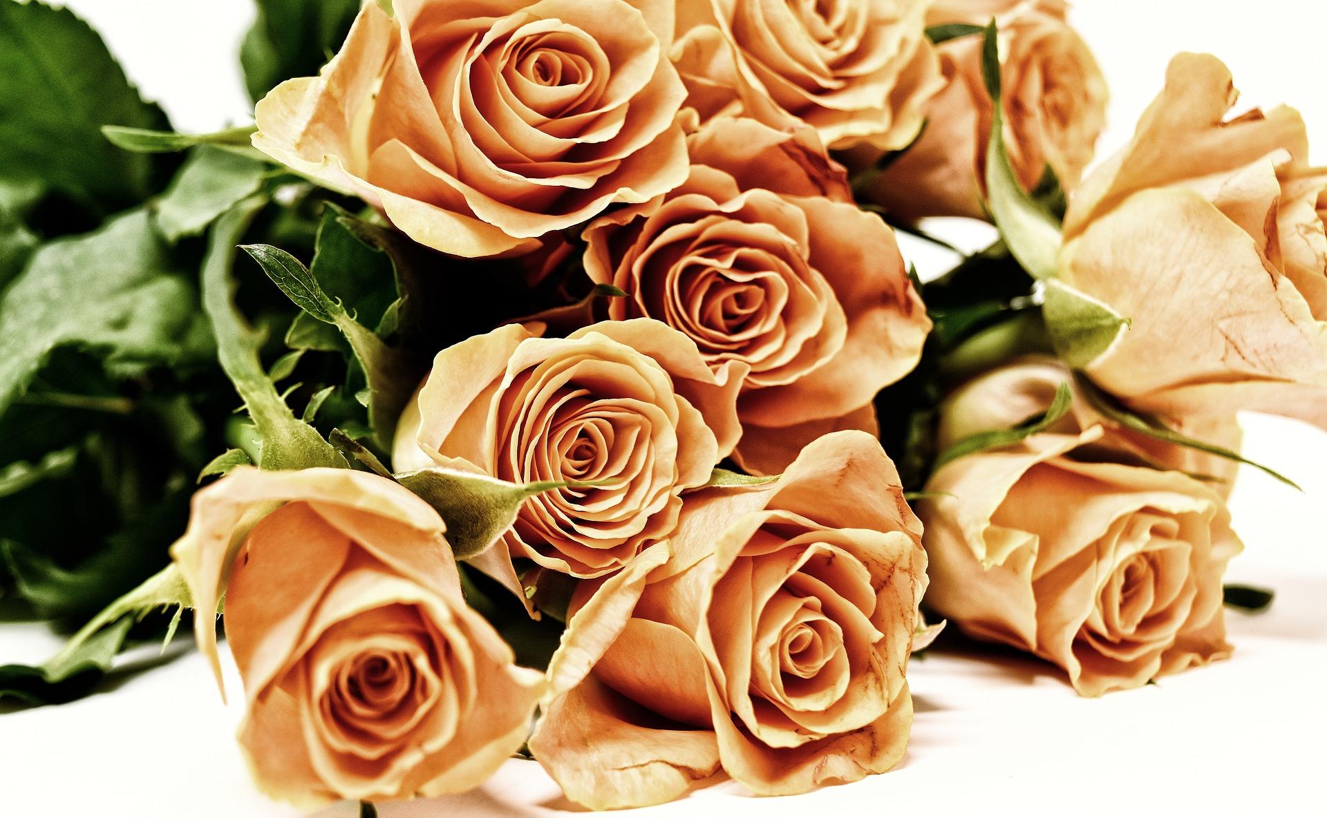 Kwiatowe zapachy do domu